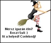 Boszi-Suli Tanfolyam