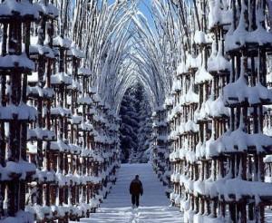 tél kapuja