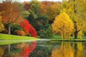 őszi pompa