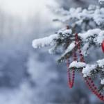 Karácsony Szelleme