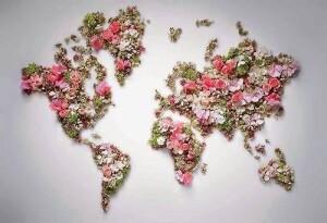 az én világom, én ültettem