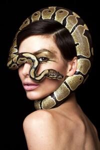 kígyó a pilisen